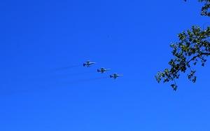 Thunderbirds 08 02