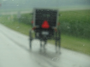 08 Amish buggy in rain