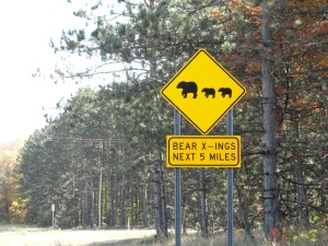 09 Bear Crossing, Cadillac, MI