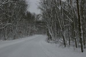 26 Snowy Ft Custer Rd 12-09